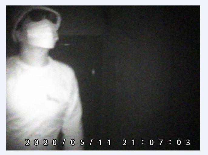 暗視撮影の画質図