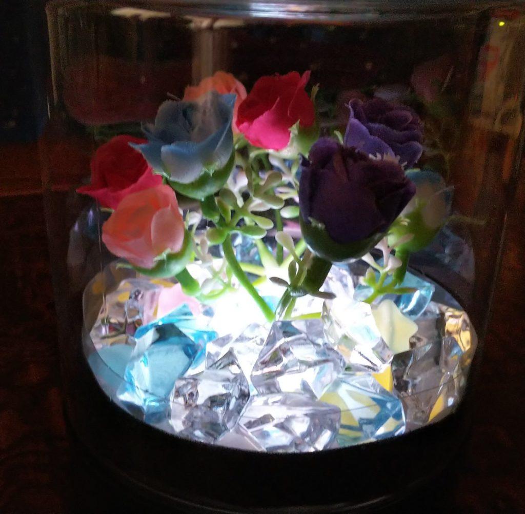 海苔容器イルミの写真