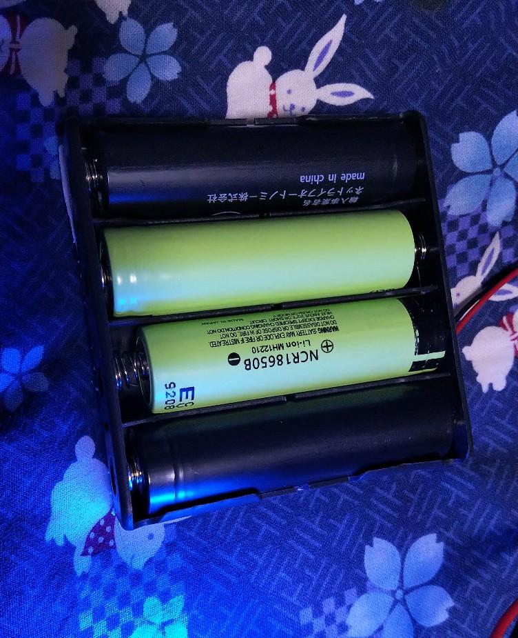 2タイプの電池を収めた様子の写真