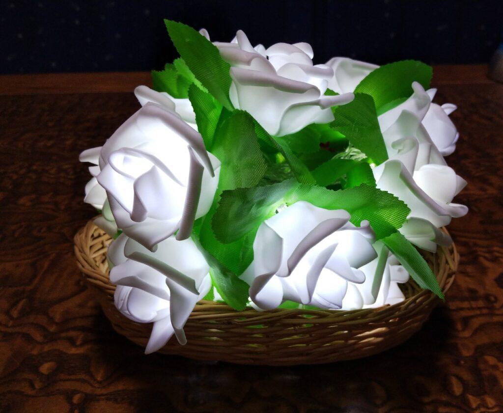 光る薔薇の写真